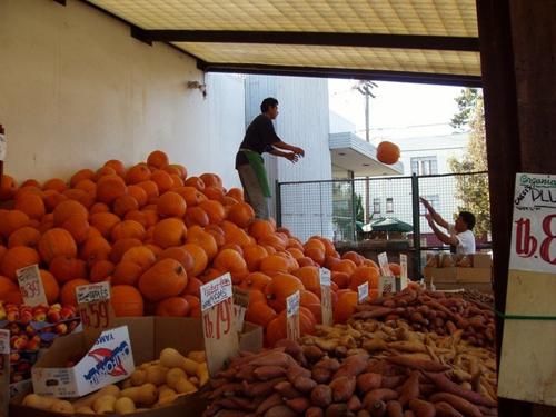 monterey_market_500