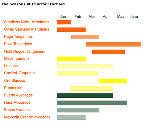 seasons_churchill