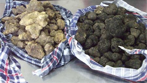 w & b truffles