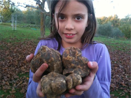 kid truffles