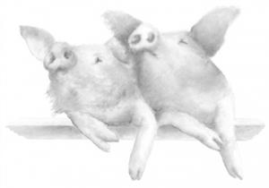 Piglets2smaller