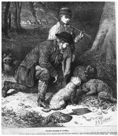 kneeling truffle