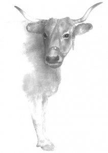 cow painting lite_400