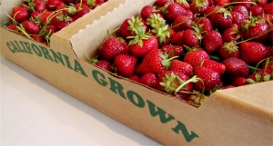 strawberries_inbox_1000