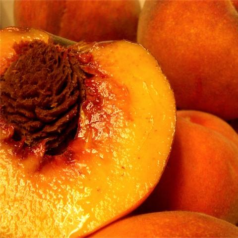 peach_480