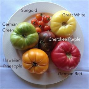 TomatoPlatter2014_288