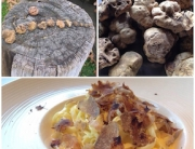 truffle_triptych_288