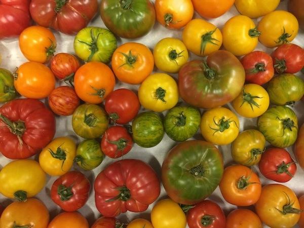 heirloom-tomatos