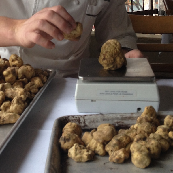 weighing-truffles-600