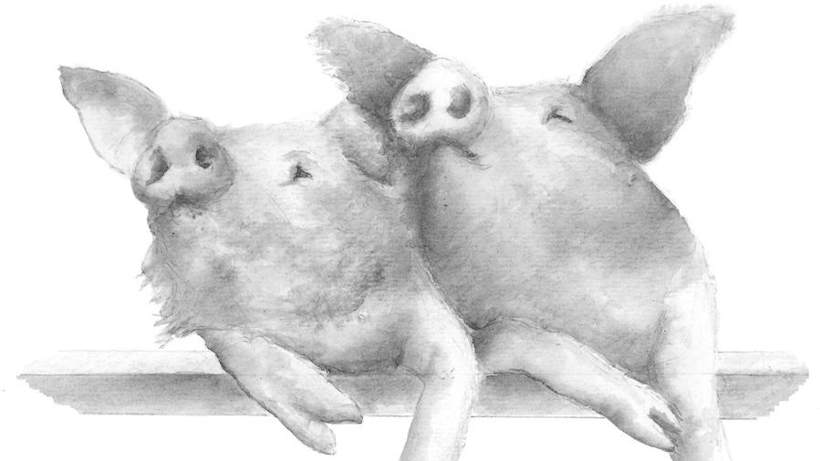Piglets2 web