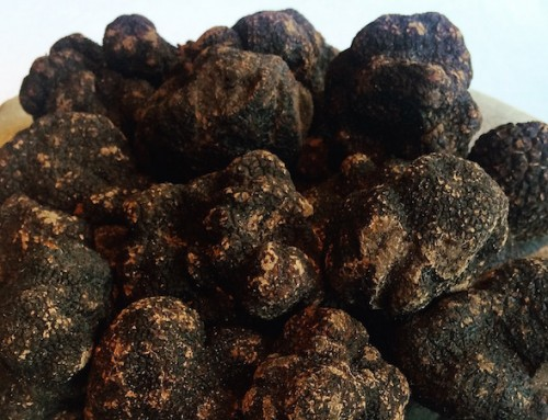 Black Truffles Are On