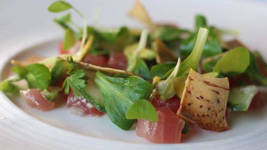 yellowfin-tuna-crud0