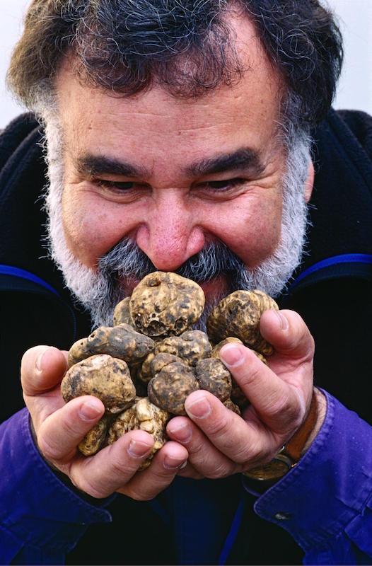 bob-with-truffles