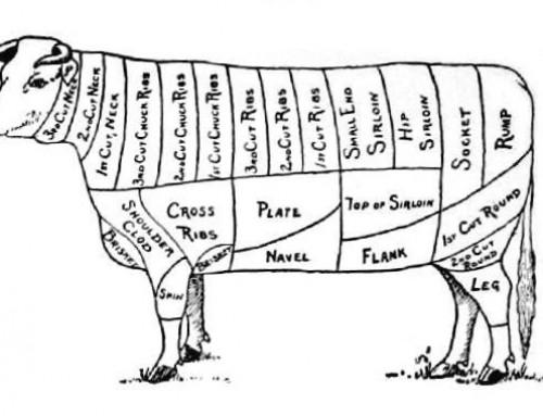 Magruder Beef, Aged 10 Weeks