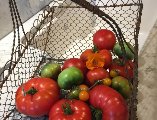 Oliveto's 27th annual tomato dinners to begin September 12