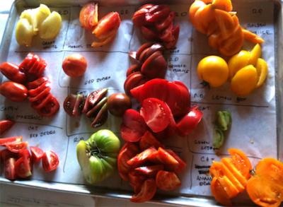 oliveto-tomato-dinners-2019